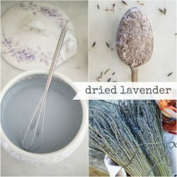 Milk Paint Dried Lavender Tester